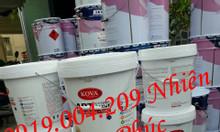 Sơn chống nóng cn05 cho mái tôn sàn sân thượng giá rẻ