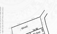 Chính chủ bán đất đấu giá thôn Thanh Sơn Sóc Sơn Hà Nội DT 98m