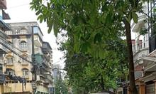 Bán nhà 5 tầng đẹp phố Kim Ngưu, 35m2 mặt tiền 4m.