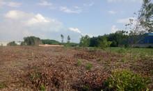 Cần bán lô đất 7000m2 tại Long Phước, giá bán 14tỷ.