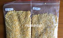 Cung cấp đậu xanh cà bóc vỏ số lượng lớn
