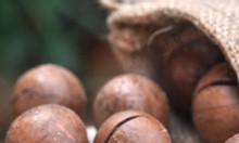 Hạt macca Úc mua ở đâu tại quận 4 TpHCM chất lượng