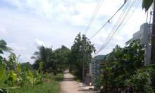 Cần bán gấp lô đất mặt tiền sông Vàm Cỏ, thị trấn Thủ Thừa, Long An