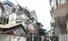 Cho thuê mặt bằng kinh doanh, đường Đặng Thai Mai