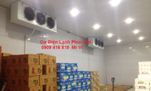 Cung cấp, lắp đặt và sữa chữa hệ thống kho lạnh