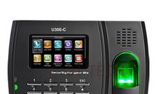 Máy chấm công vân tay và thẻ ZKTeco U300-C
