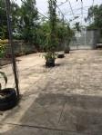 Chính chủ cần bán đất tại đường Phạm Hùng, tỉnh Sóc Trăng, vị trí đẹp.