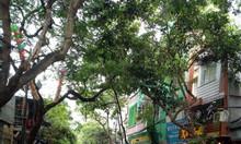 Cho thuê nhà măt phố Phương Mai, kinh doanh thuốc, cửa hàng