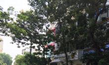 Chính chủ bán nhà mặt phố Bà Triệu, Hai Bà Trưng 162m2
