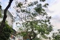 Cho thuê nhà mặt phố Vũ Trọng Khánh (Làng Việt Kiều Châu Âu)