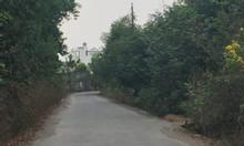 Bán 7 sào đất làm nhà vườn Long Phước, Long Thành gần Vingroup.