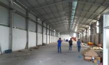 Cho thuê xưởng tại Thuận An - Bình Dương - 1000m2 - 55 tr/th