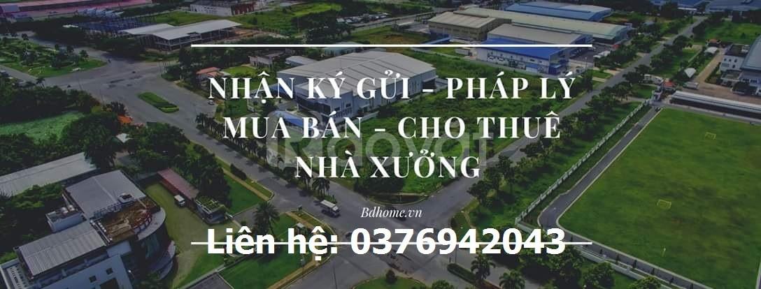 Cho thuê nhà xưởng Tân Phước Khánh, Tân Uyên, Bình Dương.
