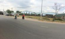 Cho thuê xưởng đường Lê Thị Trung - Bình Dương - 120 tr/th - 4000m2