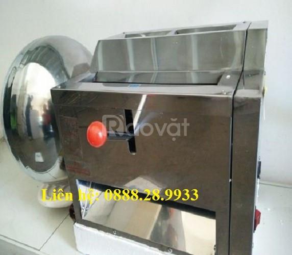 Máy làm viên hoàn mềm, máy làm viên tễ mềm DZ-40 giá rẻ