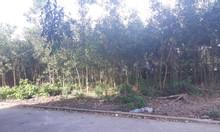Cần bán lại 9500m2 đất sau lưng UBND Tân Hiệp có 200m2 thổ cư
