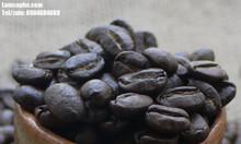 Cung cấp cà phê nguyên chất giá sỉ tại Tây Ninh