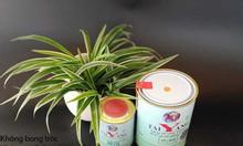 Chuyên phân phối sơn taiyang giá tốt tại Bắc Kạn
