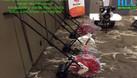 Bán và cung cấp máy tra hạt giống cho dự án uy tín, giá rẻ (ảnh 4)