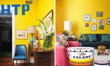 Tìm nơi bán sơn dầu Galant chính hãng, giá rẻ Tân Bình