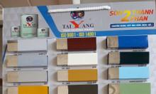 Chuyên phân phối sơn taiyang giá rẻ tại Tuyên Quang