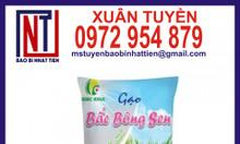 Bao bì đựng gạo 1kg - 5kg