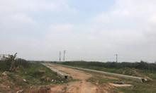 Đất dịch vụ lô góc 122m2, Di Trạch, Hoài Đức, Hà Nội