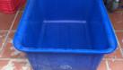 Thùng nhựa dung tích lớn tiện ích cho mô hình nuôi cá sạch ngày nay (ảnh 1)