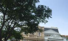 Cần bán khách sạn cao cấp 16 phòng ở Phú Mỹ Hưng, quận 7 giá tốt