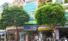 MT 91 Gò Dầu, Tân Quý, Tân Phú, TP HCM