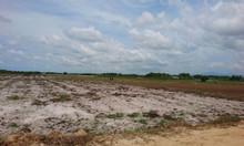 Đất nền biệt thự nghỉ dưỡng biển đang tại Lagi Bình Thuận