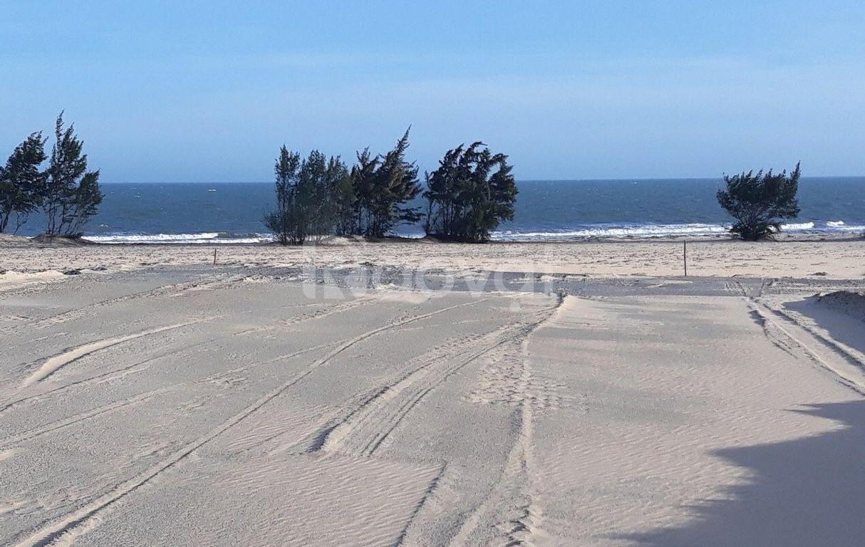 Đất biển 1000m2 (20mx50m) đất biển Lagi, vị trí đẹp, SHR