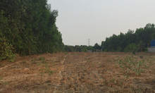 Cần mua đất sạch, SHR các diện tích để đầu tư khu vực Long Thành