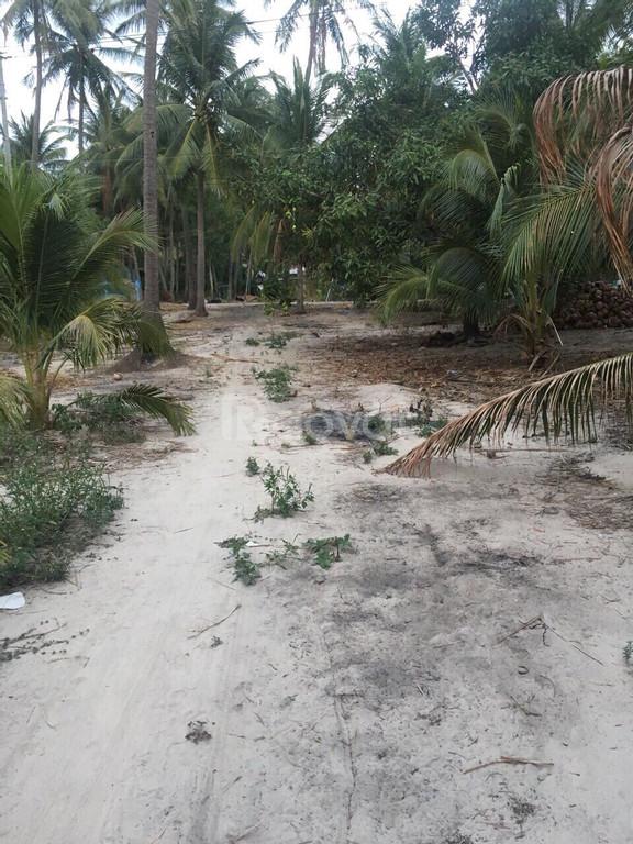 Đón đầu sốt đất sân bay Phan Thiết- 2880m2 đất gần biển, sân bay