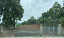 Cần thanh lý gấp mảnh đất mặt đường nhựa Xã Phú Mãn, huyện Quốc Oai.