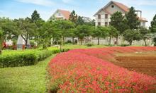 Bán biệt thự The Phoenix Garden giá từ 19,5 tr/m2, CK 4%