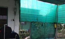 Chính chủ bán nhà cách Tỉnh Lộ 8 300m, xã Bình Mỹ, H.Củ Chi, giá tốt