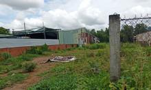 Bán đất thổ Bình Chánh, 96m2, gần bệnh viện Nhi Đồng thành phố.