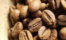 Cà phê nguyên chất ưu đãi giá sốc từ 20/07/2019 tại Cần Thơ