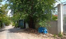 Bán đất 2380m2 gần chung cư Thạnh Lộc, quận 12
