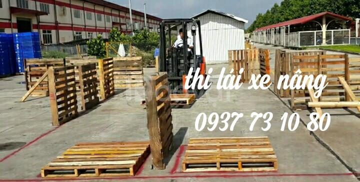 Dạy lái xe nâng tại các khu công nghiệp ở Bình Dương, Đồng Nai, HCM