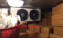 Cung cấp và lắp đặt hệ thống kho lạnh