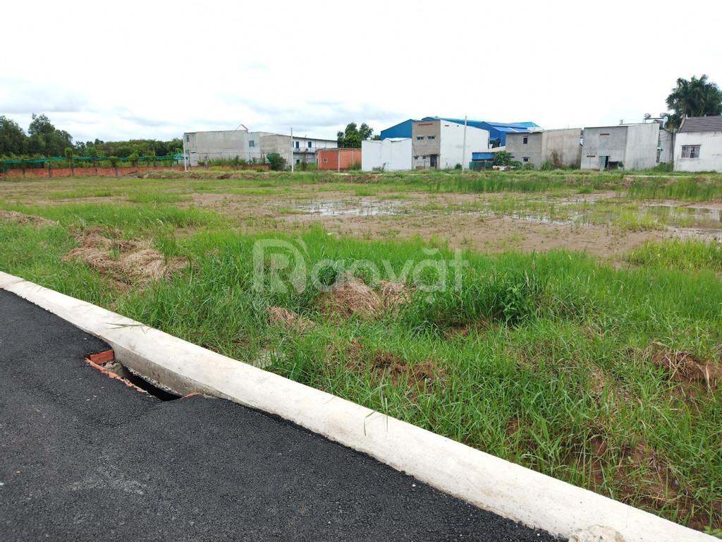 Đất KDC Huyện Bình Chánh 90m² - sổ hồng riêng