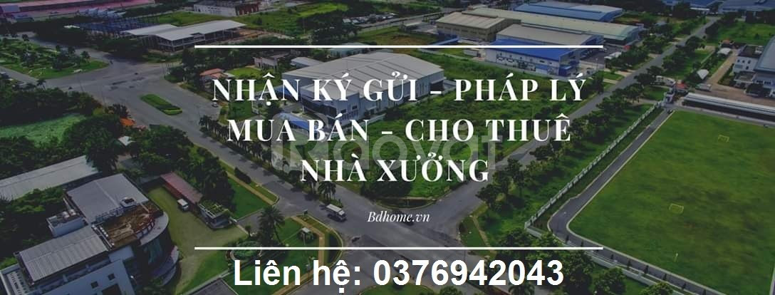 Cho thuê nhà xưởng 5000m2 mới xây dựng, phường Khánh Bình, Tân Uyên,BD (ảnh 1)