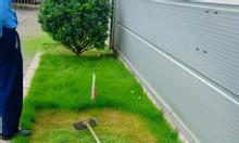 Cắt cỏ khuôn viên tại Bắc Ninh