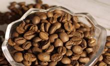 Cà phê Robusta loại 1 xuất khẩu giá sỉ tại Bình Dương