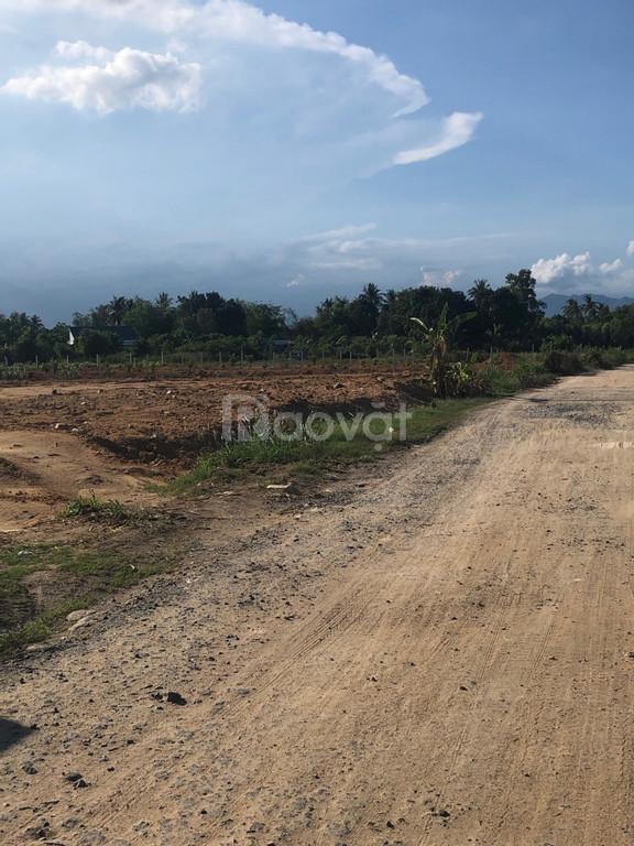 Chính chủ cần bán lô đất tại thôn Quảng Phúc, vị trí đẹp, giá tốt.