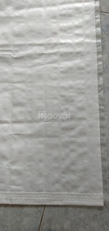 Sản xuất bao PP trắng trong không in
