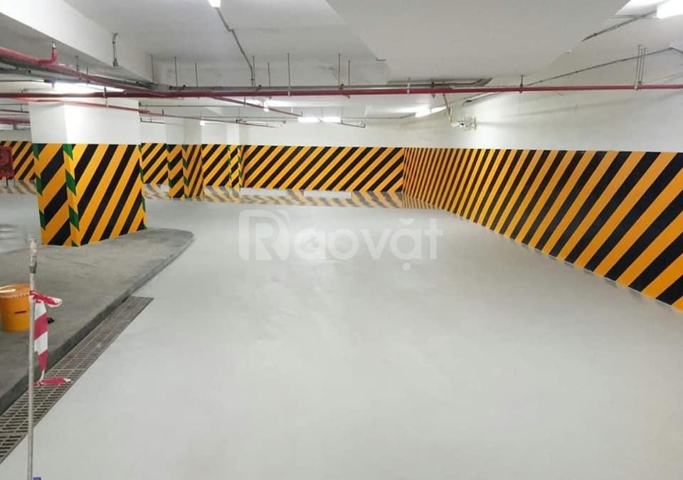 Mua sơn kẻ vạch màu vàng, đen cho tầng hầm tòa nhà, chung cư