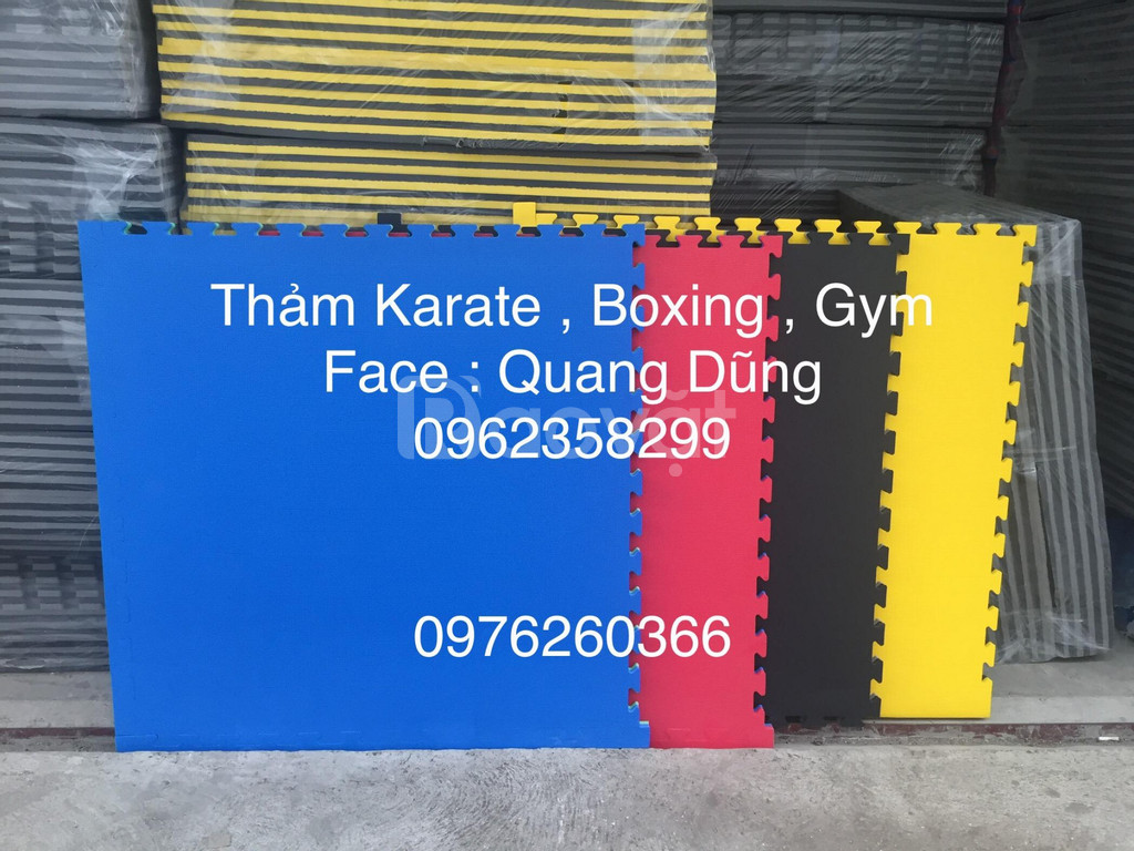Thảm taekwondo karate boxing gym